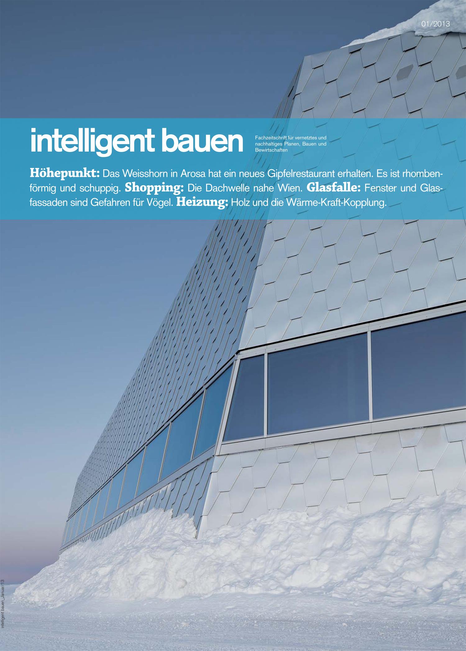 Intelligent bauen dnsarchitekten for Fachzeitschrift architektur